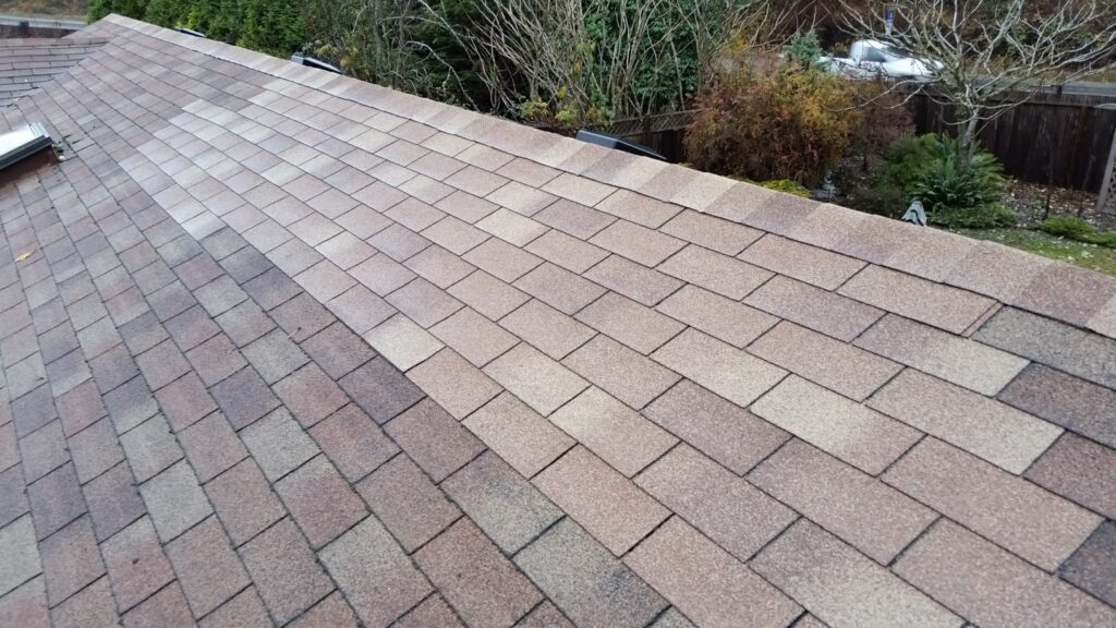 spot repaired roof shingles
