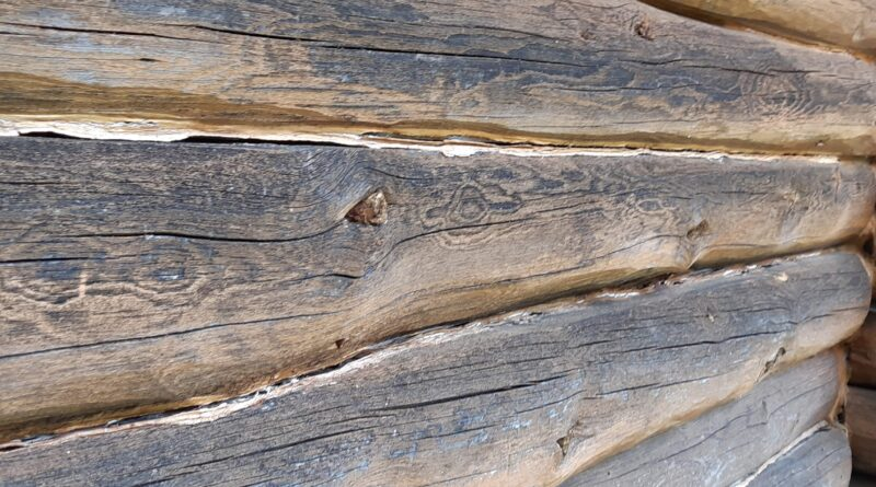 Log Home Exterior Wall